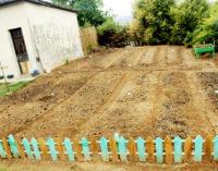 VOLY FIRST IMMO: Mpianatra 6 500 no hahazo tombontsoa amin'ity taona ity